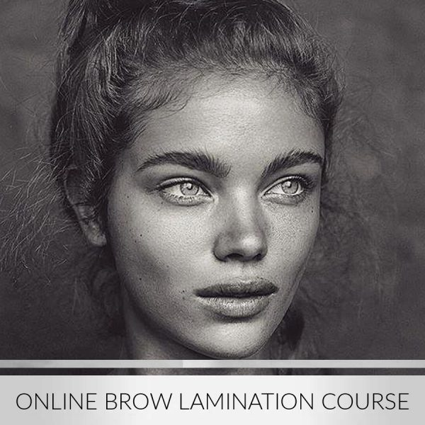 Brow-Lamination-Course-2