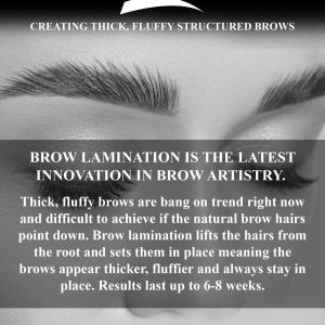 High Impact Brow Lamination Marketing Flyers